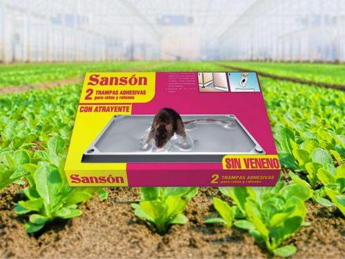 sanson para capturar ratas